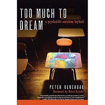 Muito para o sonho: uma infância americana psicodélica
