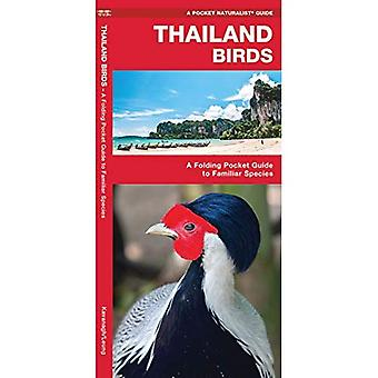 Thailand Birds: A Folding Pocket Guide to Familiar Species