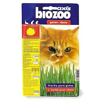 Axis-Biozoo Catnip Axis (Koty , Kocimiętka, słód i więcej)