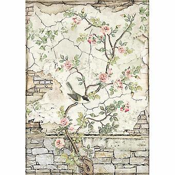 Stamperia Riisi paperi A4 Pikku lintu Branch