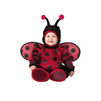 Kids Baby Lady Bug Insect World Book Day Fancy Dress Costume