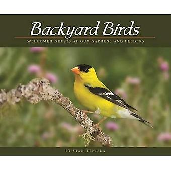 Oiseaux de basse-cour: Invités accueillies dans nos jardins et mangeoires (appréciation de la faune)