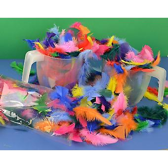 50g Assorted Bulk Coloured Feathers for Crafts