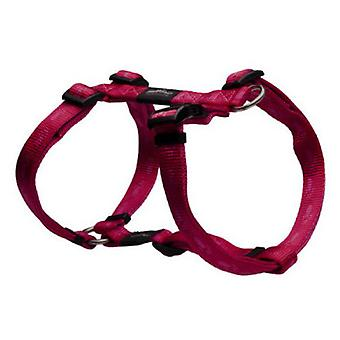 Rogz Everest Harness - Size XL (Dogs , Collars, Leads and Harnesses , Harnesses)
