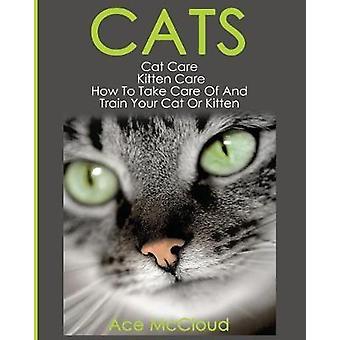 Katzen Katzenpflege Kätzchen Pflege, wie man kümmern und trainieren Sie Ihre Katze oder Kätzchen von McCloud & Ace