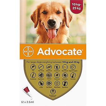 Advocate Hunde 10-25kg (22-55lbs) - 12 Packung