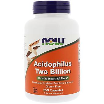 Now Foods, Acidophilus Two Billion, 250 Capsules