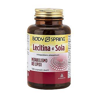 Soja lecithin 100 capsules