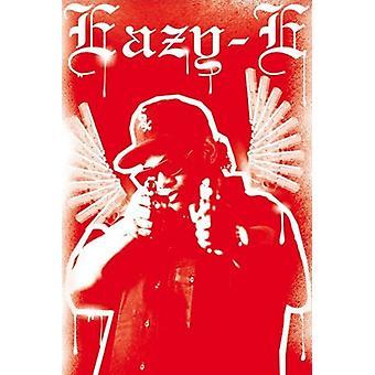 Eazy-E - Gun Flügel Plakat Poster drucken