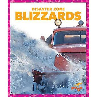 Blizzards by Cari Meister - 9781620312230 Book
