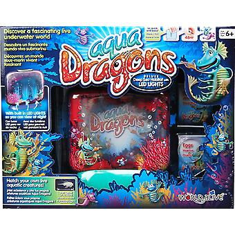 Brainstorm Aqua Dragons Deluxe Deep Sea Habitat With Led Lights