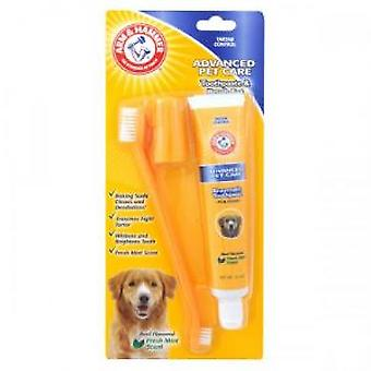 Arm & Hammer Set paste and Toothbrush (Dogs , Grooming & Wellbeing , Dental Hygiene)