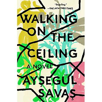 Walking On The Ceiling by Aysegul Savas