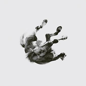 Anberlin - Dark Is the Way. Light Is a Place [CD] USA import