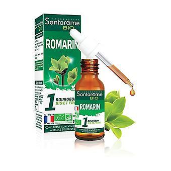 Organic Rosemary 30 ml