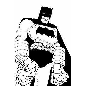 バットマン ノワール フランク ミラー - 978140127 によって再びダークナイト ・ ストライクス