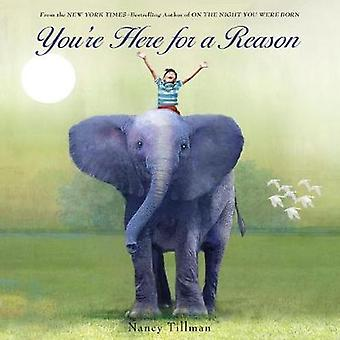 You're Here for a Reason by Nancy Tillman - 9781250106506 Book