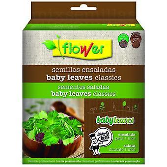Flower Seeds Baby Leaves Salad Lettuce Mesclum 51142 (Garden , Gardening , Seeds)