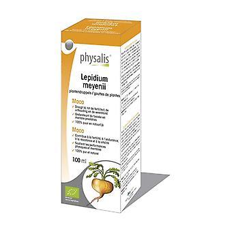 Lepidium meyenii 100 ml