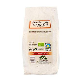 Whole Barley Flour 500 g