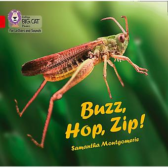 Buzz Hop Zip Big Book by Montgomerie & Samantha