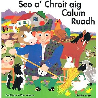 Seo aChroit aig Calum Ruadh by Translated by Gillian Rothac & Illustrated by Pam Adams