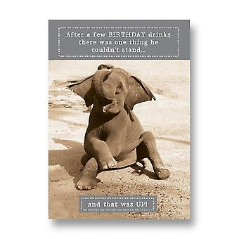 Pigment Animal Antics - Elephant Couldnt Stand Up Birthday Card Aa013a