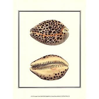 ليوبارد الصدفة قذائف طباعة ملصق جورج شو (10 × 13)