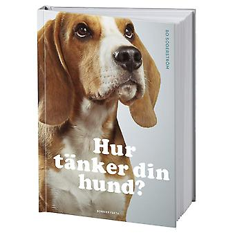 How does your dog think? 9789178870059