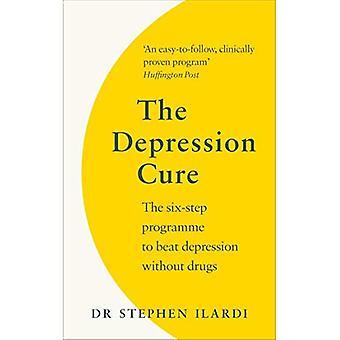 La guérison de la dépression: Le Programme en Six étapes pour vaincre la dépression sans médicaments