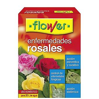 Flower Diseases Of The Roses 30573 (Garden , Insect and parasitics)