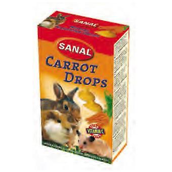 Sanal porkkana Drops välipaloja jyrsijät (pieni PET kohtelee)