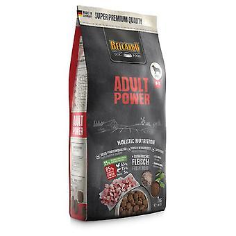 Belcando Adult Power (Dogs , Dog Food , Dry Food)