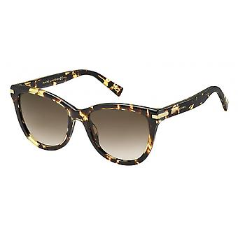 Sunglasses Women's Havana (Scream Hvna)
