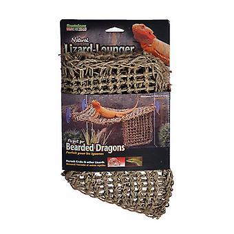 "Penn Plax Reptology Natural Lizard Lounger - Large - (14""L x 14""W)"