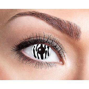 Cebra negro blanco lentes de contacto