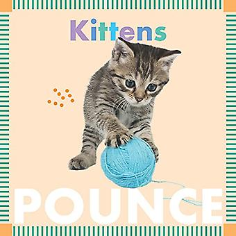Kittens Pounce (Amicus Ink Board Books) [Board book]