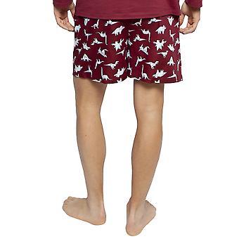 Cyberjammies 6410 mannen ' s Joseph Bourgondië rode mix dinosaurus print katoen pyjama korte
