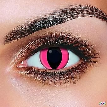 Pink Cat Contact Lenses (Pair)