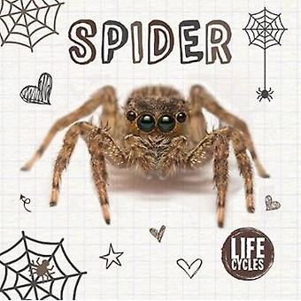 Spider by Holly Duhig