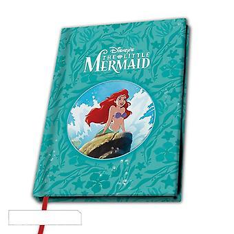 Pieni merenneito Ariel A5 Notebook