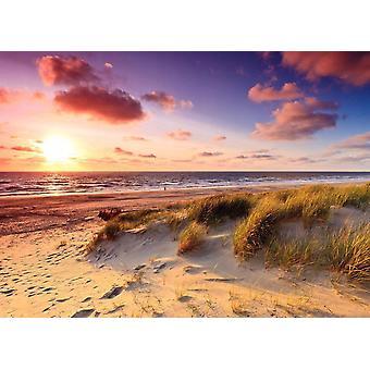 Tapetti Mural Dunes Sunset