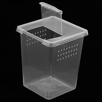 Plastic Insect Spider Habitat Feeding Box Case Container Transport Hatching