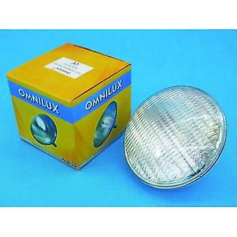 Omnilux WFL Schwimmbad Halogen 12 V G53 STC 300 W White dimmable