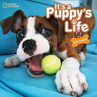 Het is een Puppy's leven (dieren) door Seth Casteel - 9781426330698 boek