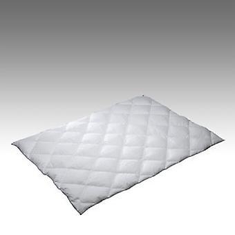 Täcke Kaxholmen Polyesterfiber 65x80