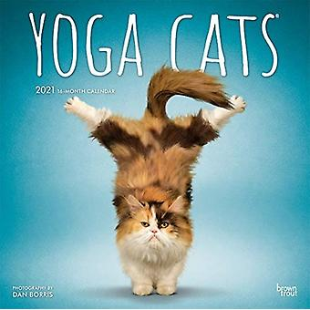 Yoga Cats 2021 Square Calendar by Browntrout