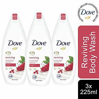 3 Pack Dove Reviving & Energises Body Wash, Pomegranate & Hibiscus Tea, 225ml