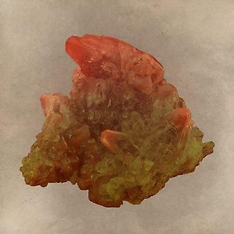 מבוכים - אורס & מינרלים ויניל