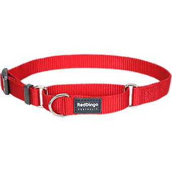 Red Dingo Plain Rd collier Semiahogo (Chiens , Colliers, Leads and Harnesses , Collars)